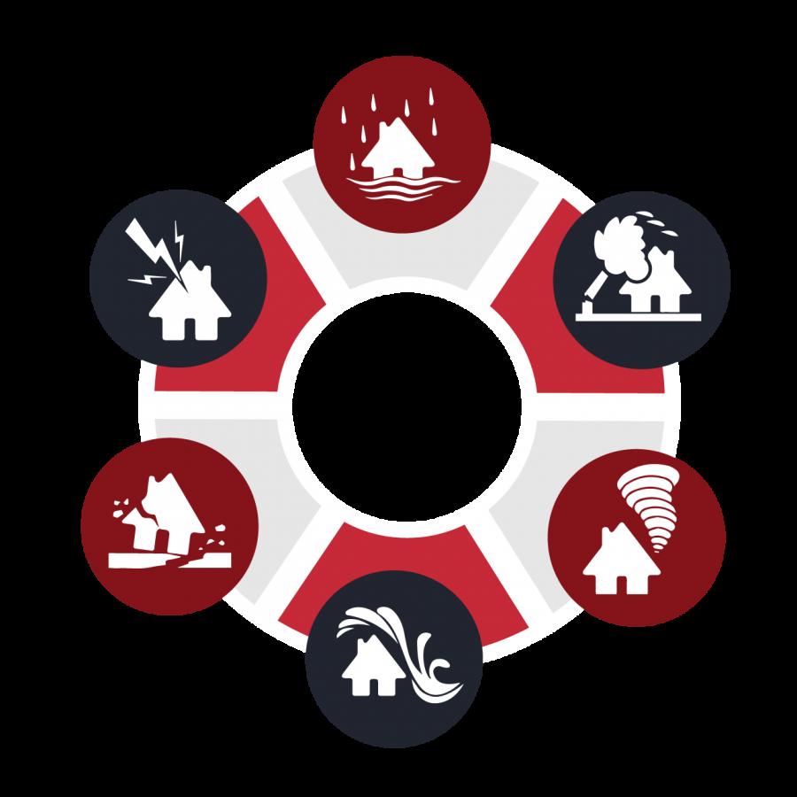 Disaster Risk Management: Survival Guide for Businesses